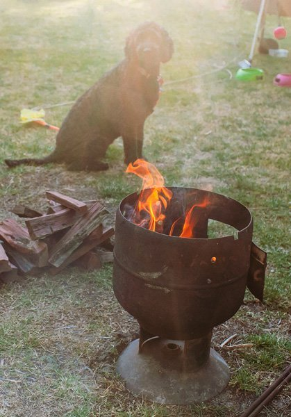 Campfire-and-dog