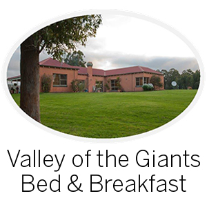 Valley of the Giants B&B